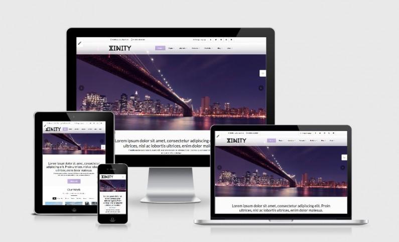 Beispiel WordPress Premium Theme Xinity